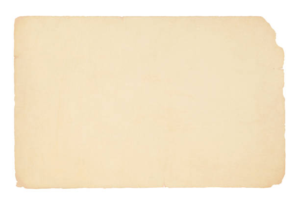 a horizontal vector illustration of a plain blank beige colored old paper - at the edge of stock illustrations