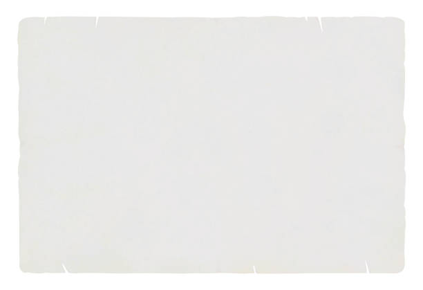 a horizontal vector illustration of a plain blank light grey  colored old ripped paper - at the edge of stock illustrations