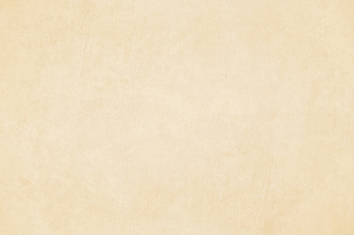 Horizontal vector Illustration of an empty light brown shade grungy textured background