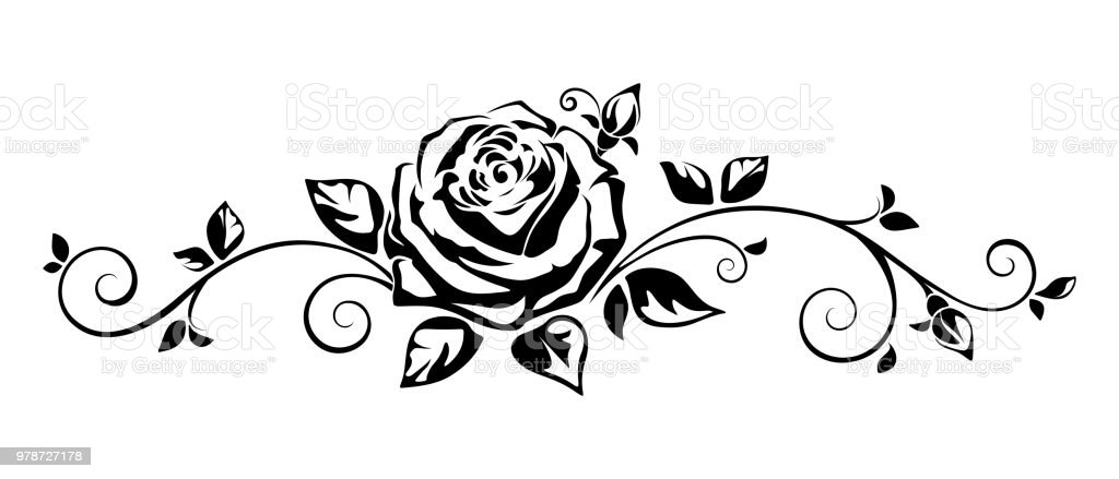 Horizontal Vignette With A Rose Vector Illustration Stock Vector Art