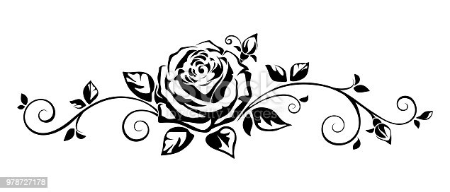 Horizontal vignette with a rose. Vector illustration.