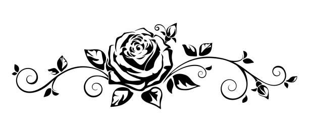 Horizontal vignette with a rose. Vector illustration. Vector horizontal black and white vignette with a rose. flowers tattoos stock illustrations