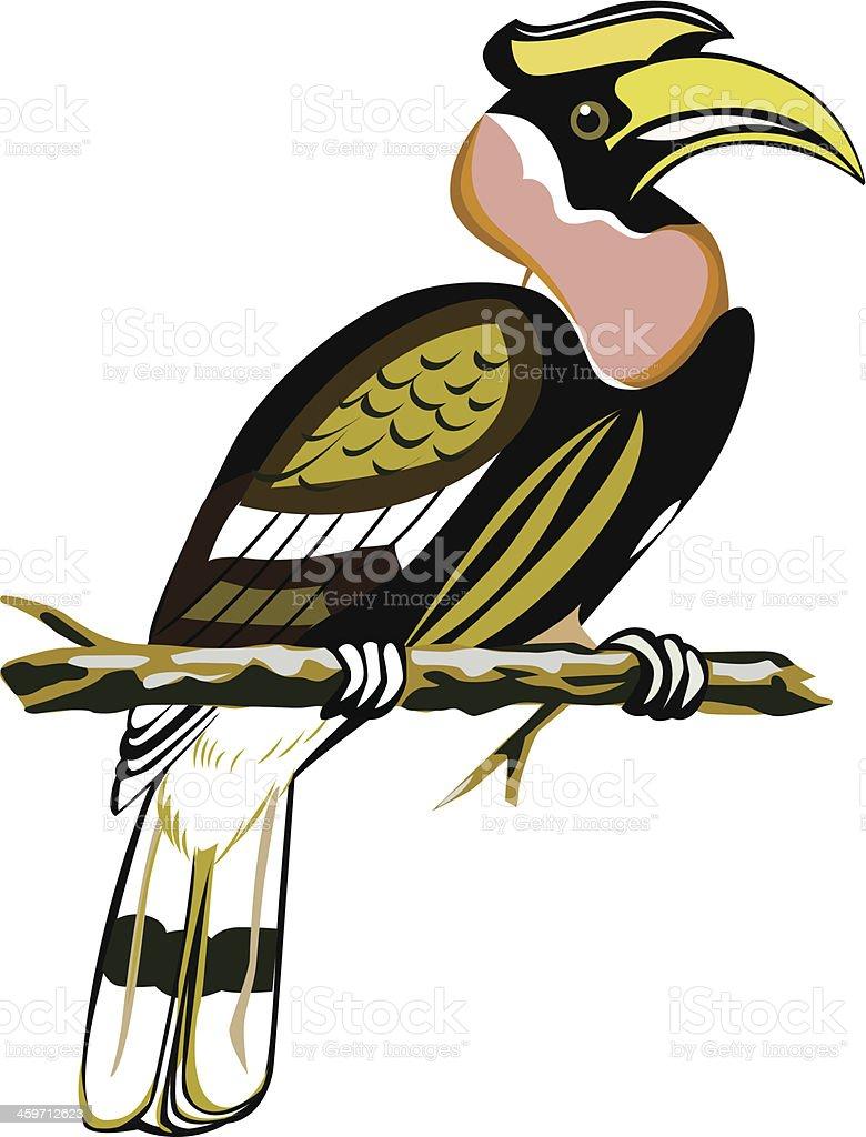 horn bill vector art illustration