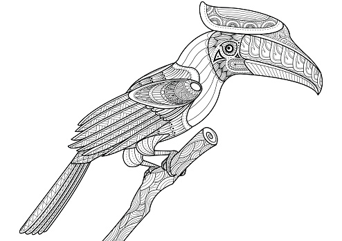 Hornbill Bird On The Tree Design For Coloring Book Stock Illustration Download Image Now Istock