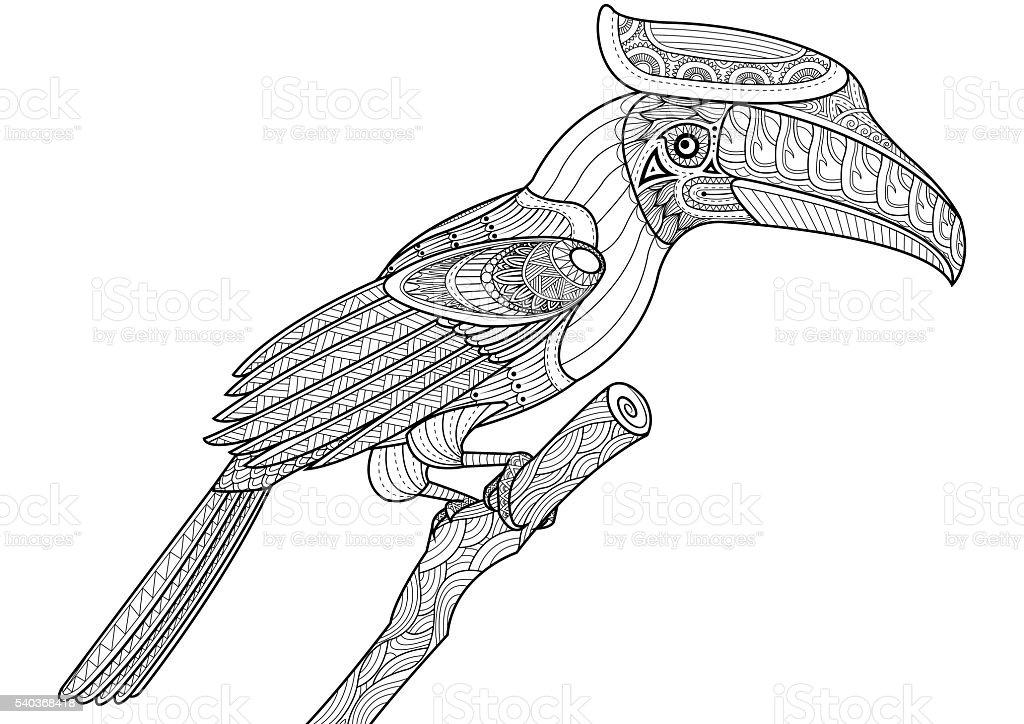 Hornbill bird on the tree zentangle design for coloring book vector art illustration