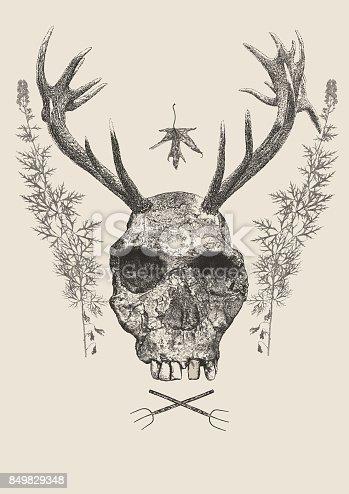 istock Horned Skull 849829348