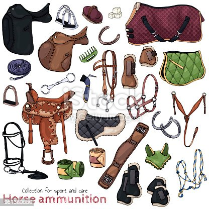 Group of vector illustrations on the theme horse ammunition; set of isolated objects for equestrian sport and care.