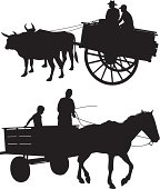 Common methods of transportation in developing countries. Ox &cart and horse &cart