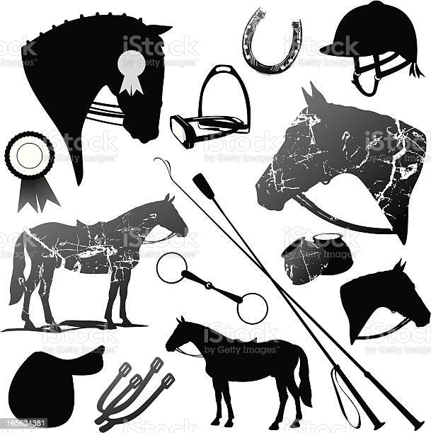 Horse and english riding black silhouettes set vector id165634381?b=1&k=6&m=165634381&s=612x612&h=sh 3t3ie9fpnyddmxj0bz 0qziji3z2ypb6ffwrdzas=