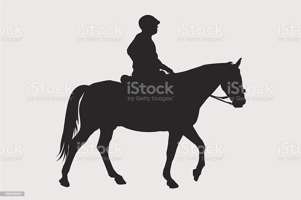 Horse and Jockey ( Vector ) royalty-free stock vector art