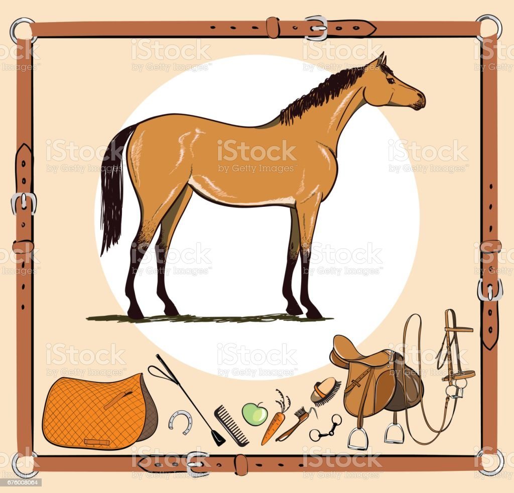 Horse and riding tack tools in leather belt frame. Bridle, saddle, stirrup, brush, bit, harness, supplies, whip equine harness equipments. vector art illustration