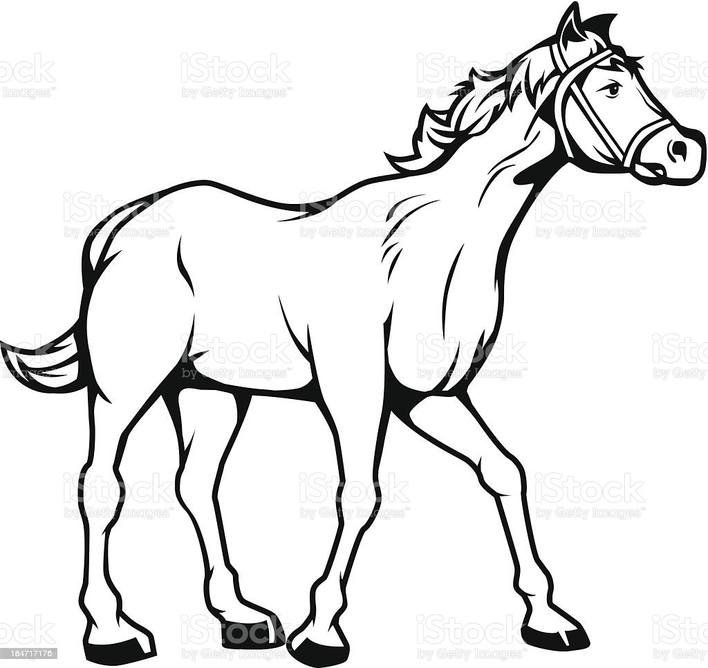 Horse Black And White Stock Illustration Download Image Now Istock