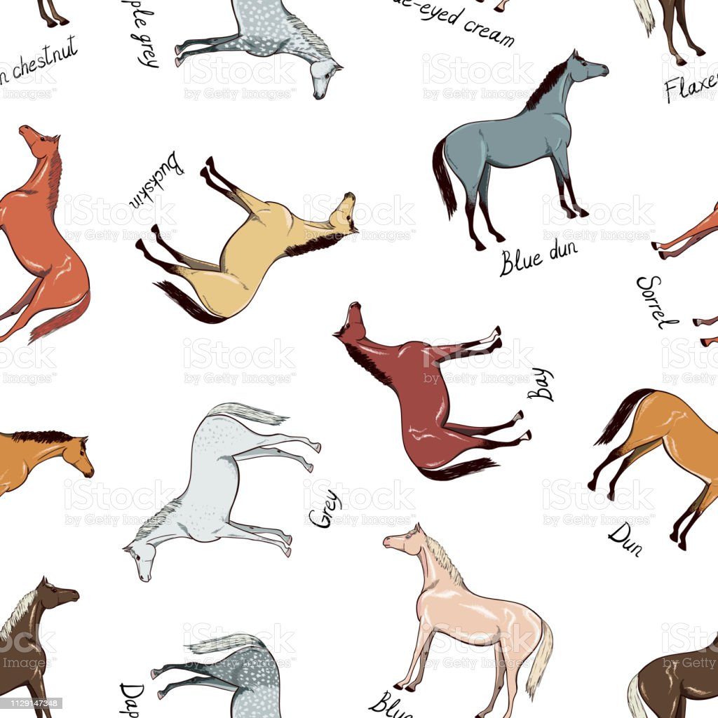 Horse color chart seamless pattern. Equine coat color with text. Equestrian scheme.