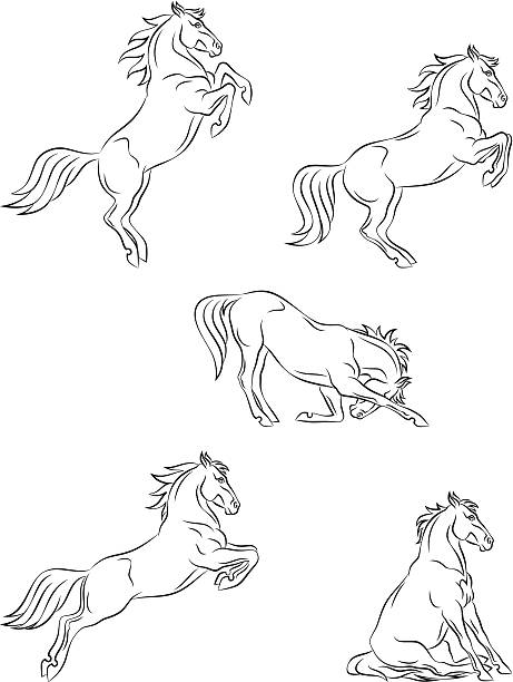Horse dressage vector art illustration