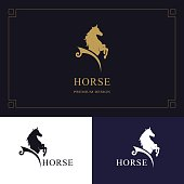 Vector illustration of Horse emblem. King stallion in jump. Racehorse head profile. Stylish graphic template design for company, farm, race.