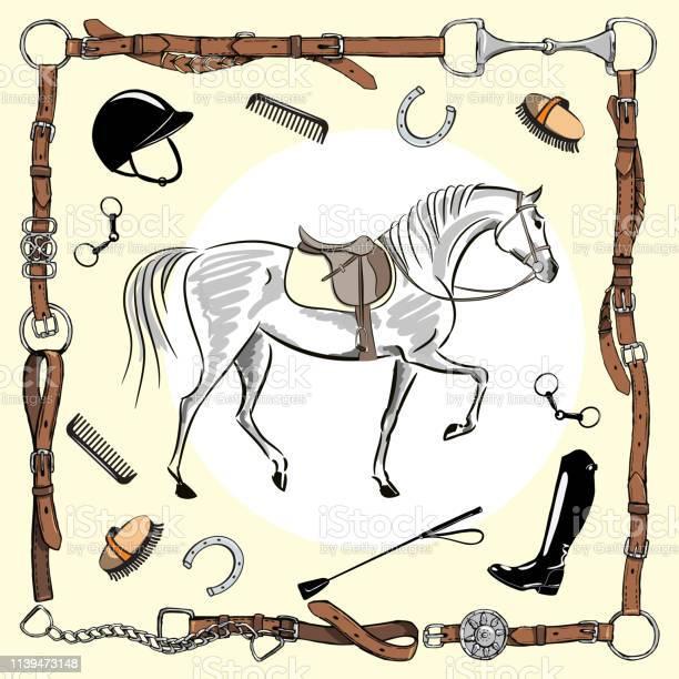 Horse equestrian riding gear tack tool in leather belt bridle frame vector id1139473148?b=1&k=6&m=1139473148&s=612x612&h=v8txvmxxzf743hygyt9pffoc6qc9wmiczeifyt7lz4i=