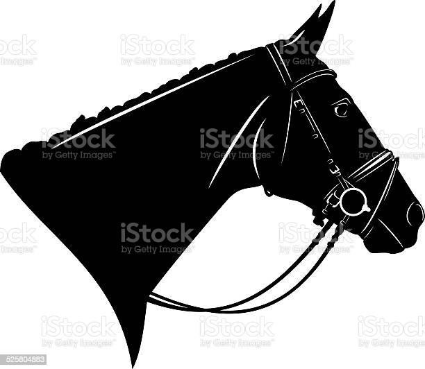 Horse harness vector id525804883?b=1&k=6&m=525804883&s=612x612&h=j5oewzlyqawmyvazja1l2roipnuajoewbqrrw 1vqeu=