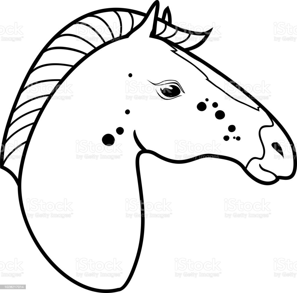 Horse Head Coloring Page Royalty Free Stock Vector Art Amp