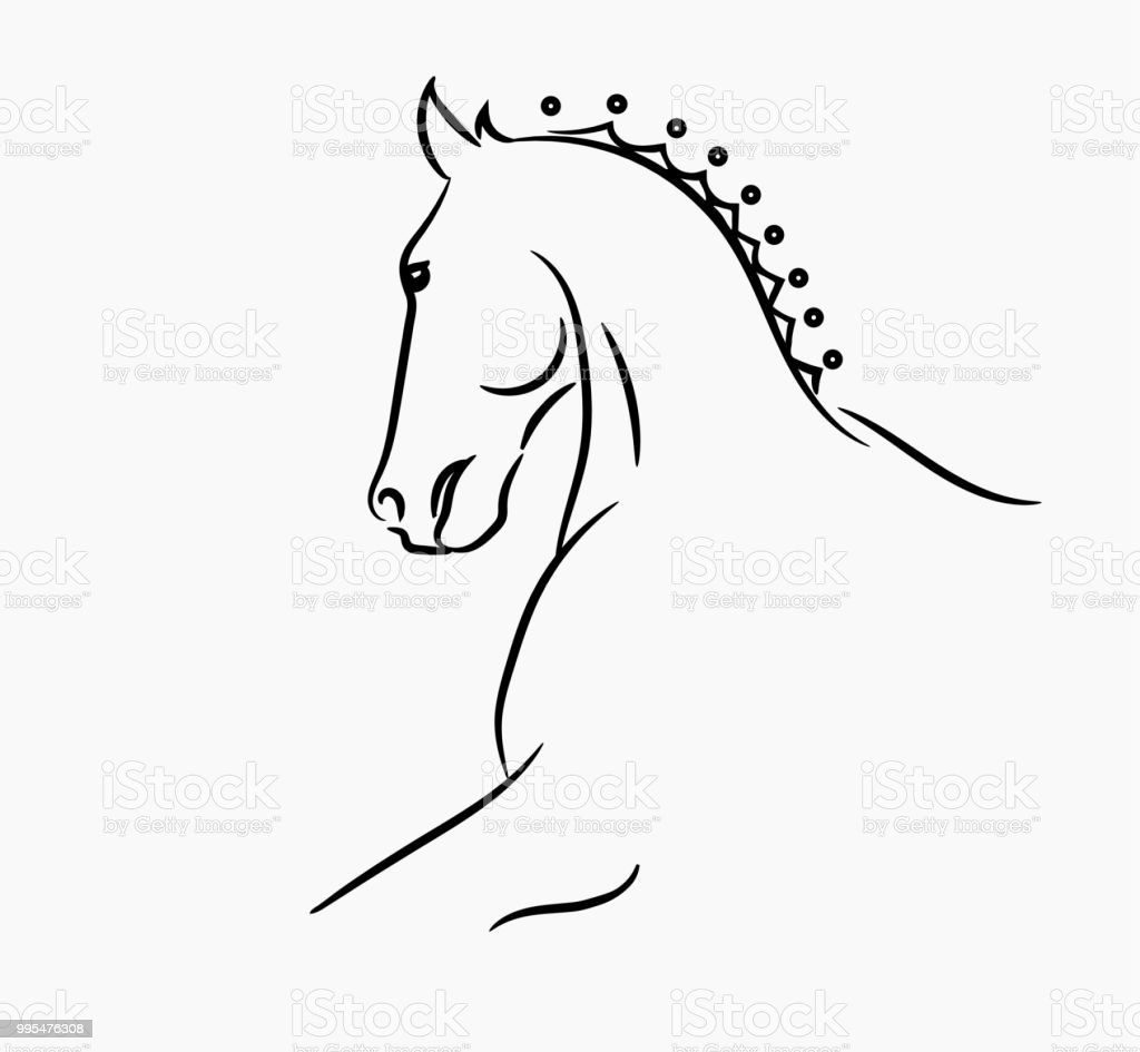 Horse Head Graphic Template Vector Illustration On White Background