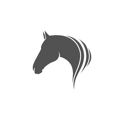 Horse head icon or symbol