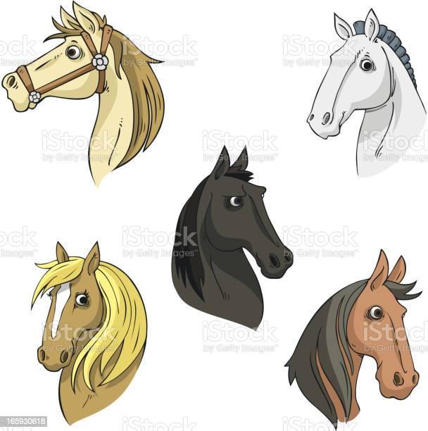Horse head stallion equine collection vector illustration vector id165930618?b=1&k=6&m=165930618&s=612x612&h=1eguseox5oxazpkmgw6t0rptwxvkfq2yh79cuq20jji=
