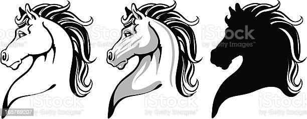 Horse head vector id165769207?b=1&k=6&m=165769207&s=612x612&h=spvpps5fxxwooqbxn6jc66vdosyueqltqphqs8f9 a4=
