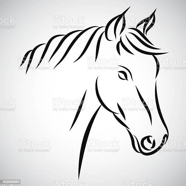 Horse head vector id509808885?b=1&k=6&m=509808885&s=612x612&h=sewc h tg7vwrodu yzrvnlwbttfmm8qmjztwg2mmc8=