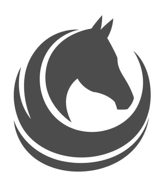 ilustraciones, imágenes clip art, dibujos animados e iconos de stock de cabeza de caballo  - caballo