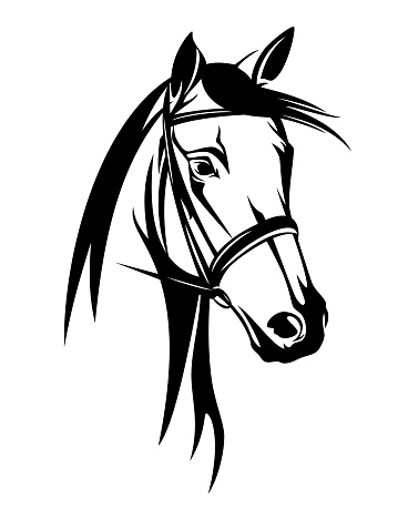 horse head with bridle black vector outline