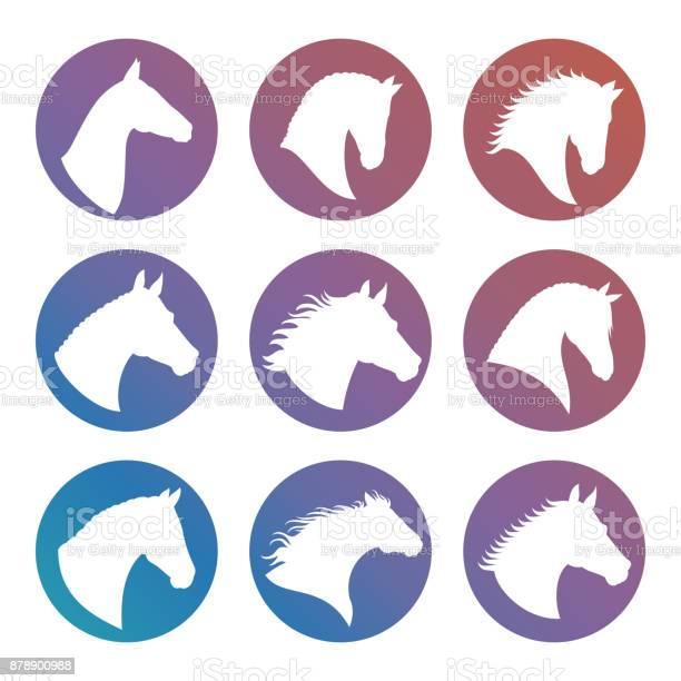 Horse heads silhouettes icons set vector id878900988?b=1&k=6&m=878900988&s=612x612&h=x2vuzizan5na7iyxwu6lr2s65vsx pk5qqacqiuzeqq=