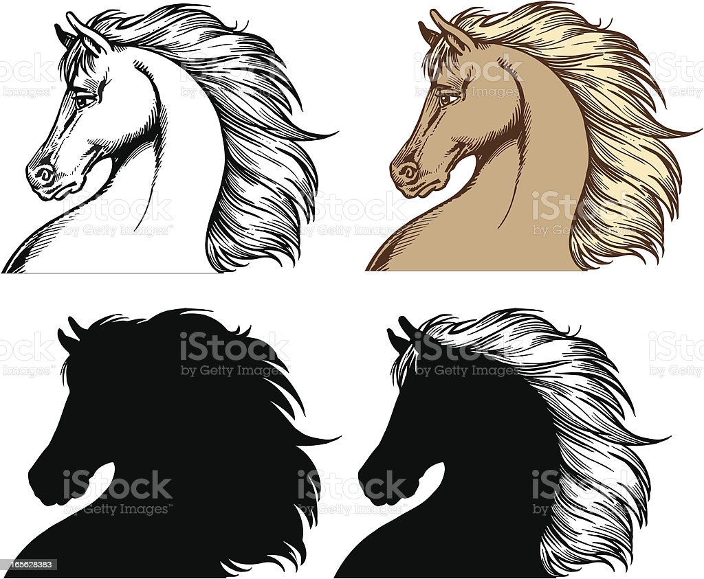Horse heads royalty-free stock vector art