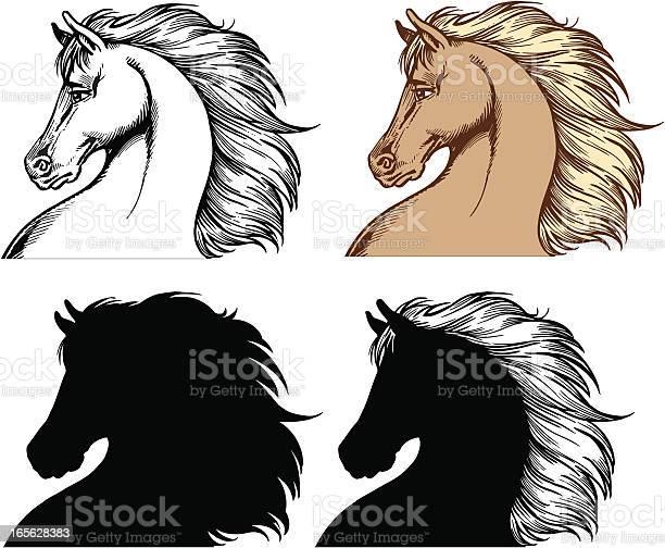 Horse heads vector id165628383?b=1&k=6&m=165628383&s=612x612&h=qvc0ydpglkg r5nl6kfjbv6fulqb8sxqyefndhc1k3w=