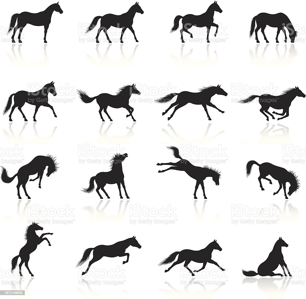 Horse Icon Set vector art illustration