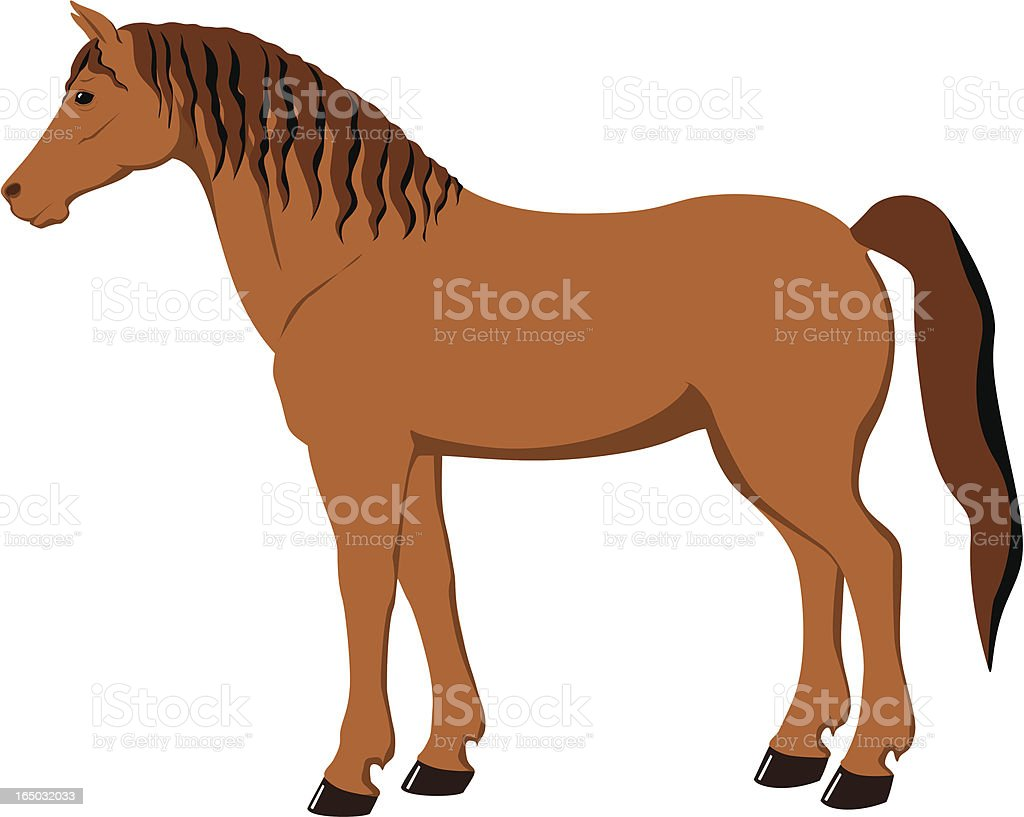 Horse illustration royalty-free horse illustration stock vector art & more images of animal