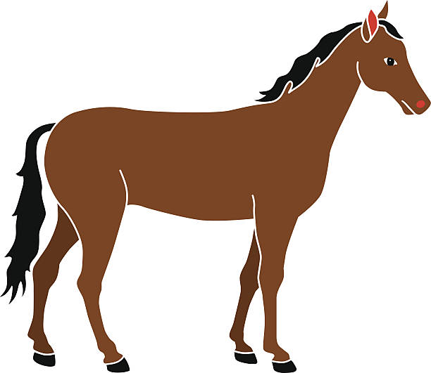 Royalty Free Brown Horse Clip Art, Vector Images ...