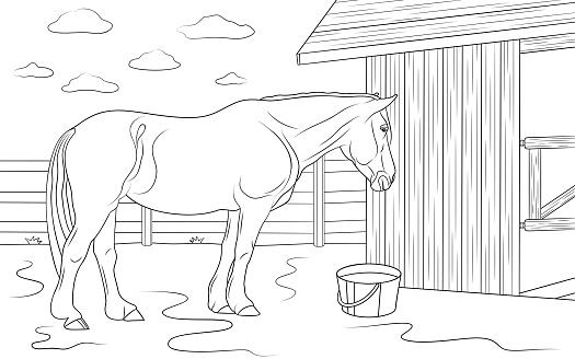 Horse is standing near its stable in outdoors. Illustration for coloring book.