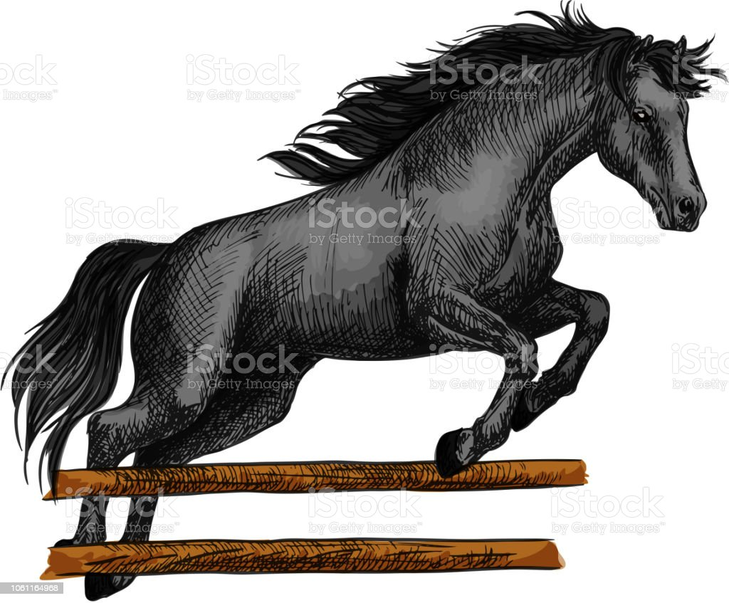 Horse Jumping For Equine Horserace Sport Symbol Stock Illustration Download Image Now Istock
