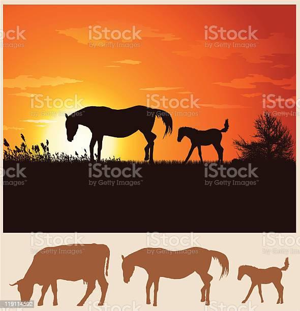 Horse landscape illustration vector id119114592?b=1&k=6&m=119114592&s=612x612&h=goffdxknuit9ddfqcgu npddz rgfj1eenreg58maru=