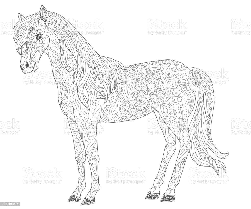 大人の塗り絵の馬のページ動物のベクトル図です いたずら書きの