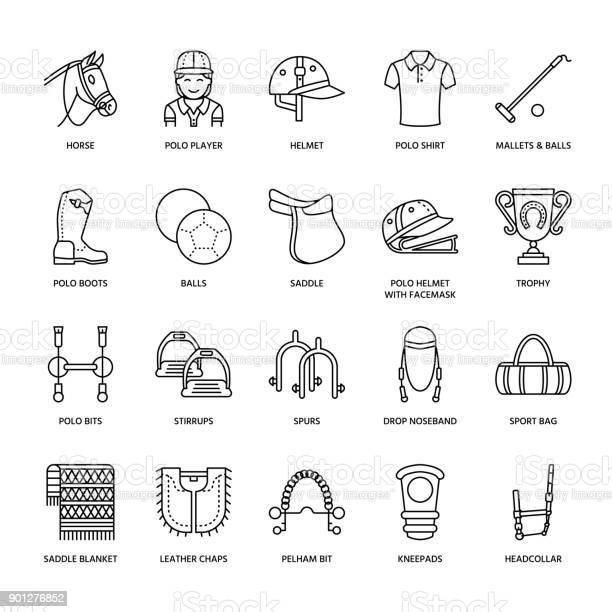 Horse polo flat line icons vector illustration of horses sport game vector id901276852?b=1&k=6&m=901276852&s=612x612&h=evw78k6xsm4yuosueefgd1ohdsdvk0iyz5ovuou5ca8=