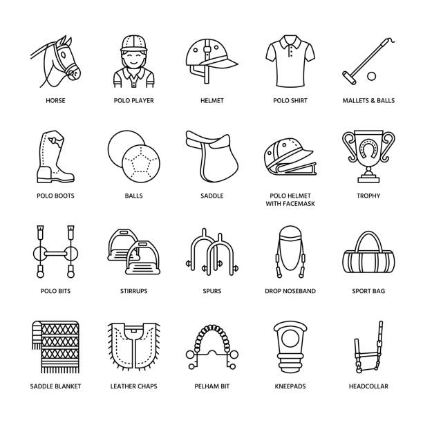 horse polo flat line icons. vector illustration of horses sport game, equestrian equipment - saddle, leather boots, harness, spurs. linear signs set, championship pictograms for event, gear store - pony stock illustrations