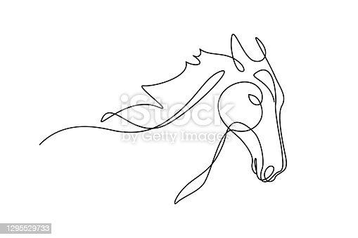 istock Horse portrait 1295529733
