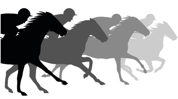 Horse Race Course Vector Art Illustration