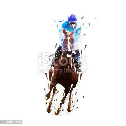 Horse racing, equestrian. Isolated low poly vector illustration