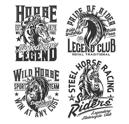 Horse racing t shirt prints, equestrian sport club