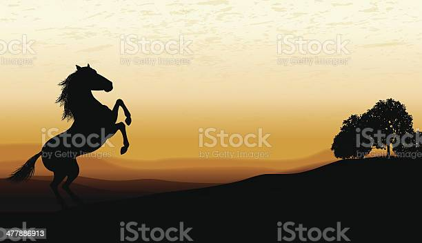 Horse rearing at twilight background vector id477886913?b=1&k=6&m=477886913&s=612x612&h=ril8atmd5xrxhmw42hqzln7baxc9md2c589q1ta04zk=
