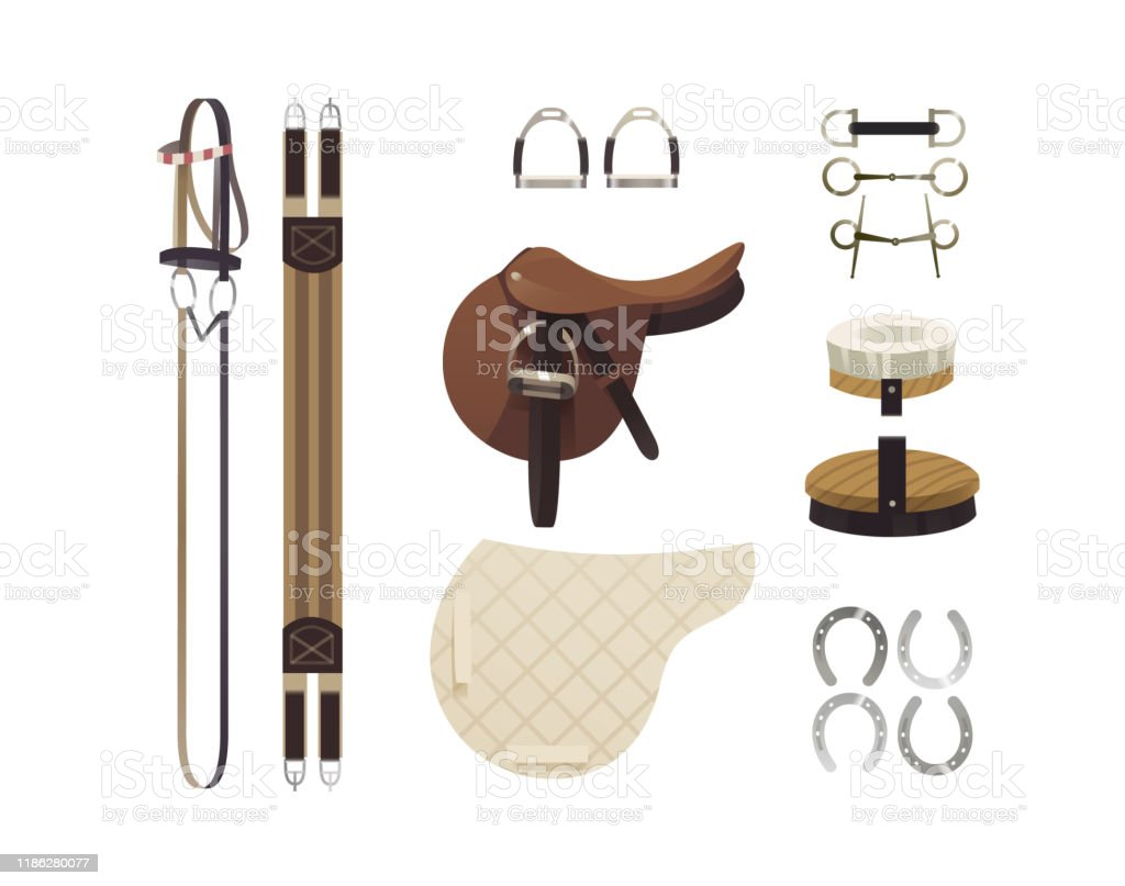 Horse Riding Gear And Accessories Stock Illustration Download Image Now Istock