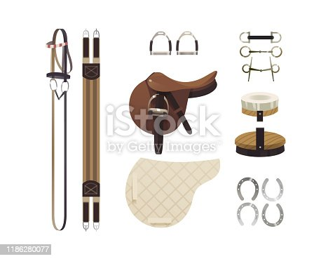 Equestrian grooming tools and horse back riding essentials, equipment set, horse riding gear and accessories