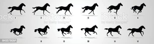 Horse run cycle silhouette vector id845379058?b=1&k=6&m=845379058&s=612x612&h=mkx10kkblrxjebu26ykmrtcgqg 8d963os6b1xkmj1y=