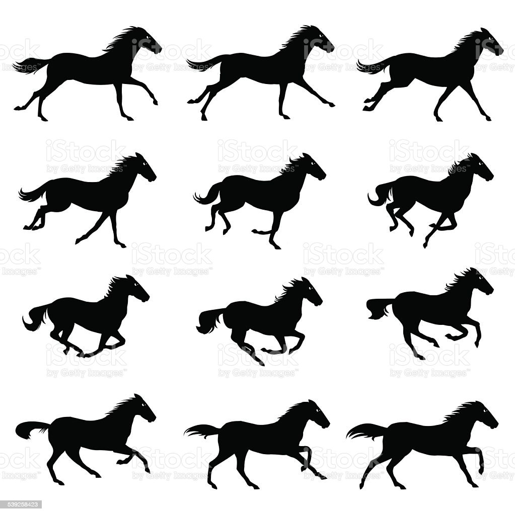 Horse Run Cycle vector art illustration